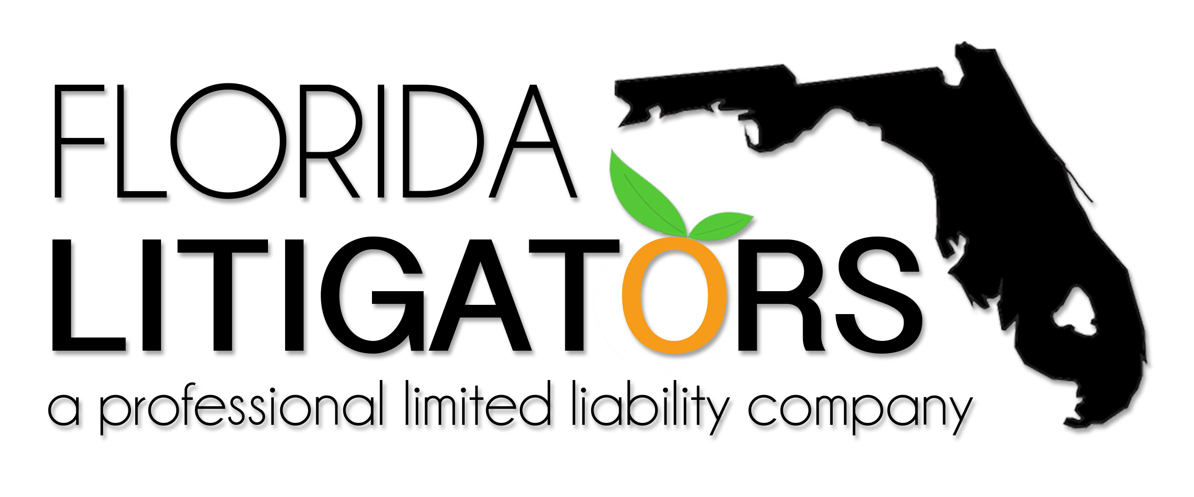 Florida Litigators PLLC